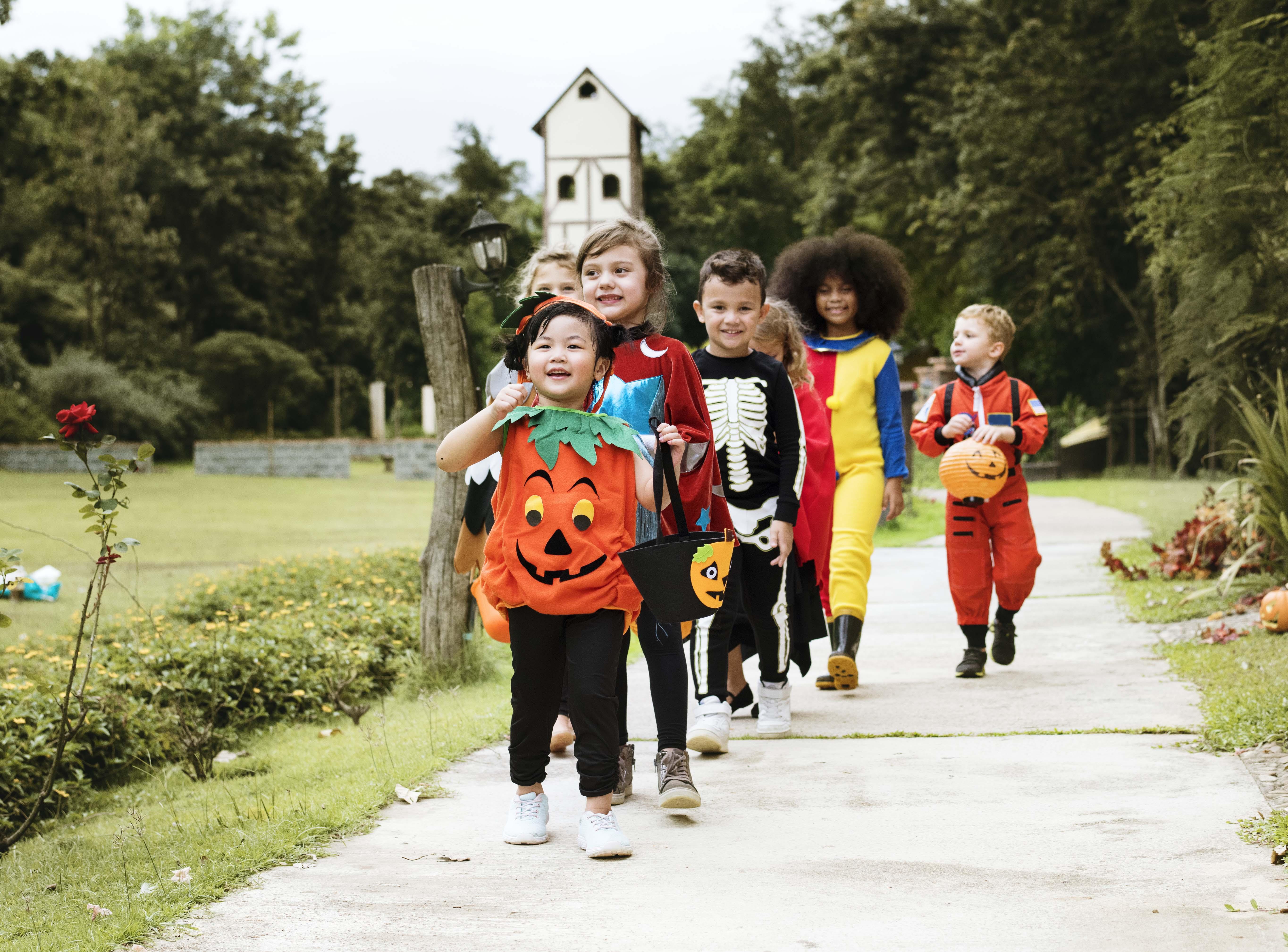 Oak Grove Halloween Costume